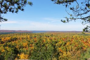 Algonquin Autumn Colours: A Day Trip from Toronto