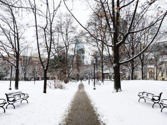 Toronto-winter